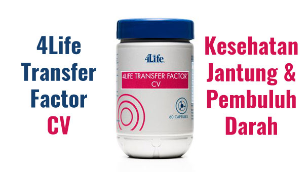 4life transfer factor cv targeted